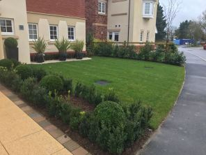 Landscaped Front Garden