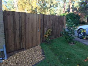 Closeboard Fencing and Garden Gate